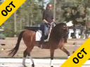 Shannon Dueck<br>Assisting<br>Beatric Bennett<br>Corona<br>KWPN<br>14 yrs. old<br>Training: Grand Prix<br>Duration: 37 minutes