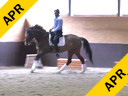 Dave Thind<br> Assisting<br> Katherine Figueroa<br> Marno<br> 12 yrs. old Oldenburg<br> Training: I1<br> Duration: 22 minutes
