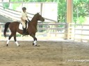 Day 2<br> Felicitas von Neumann<br> Assisting<br>  Julie Cochron<br> Toric<br> 7 yrs. old Hanoverian<br> Training: 4th Level<br> Duration: 25 minutes