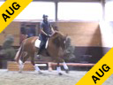 Dave Thind<br> Assisting<br> Beth Shepherd<br> Buddy<br> 16 yrs. Old<br> KWPN/Morgan<br> Training: 1st Level Double Bridle<br> Duration: 19 minutes