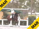 Betsy Steiner<br> Assisting<br> Jessie Steiner<br> Magdalena<br> KWPN<br> 11yrs. old Mare<br> Training:1-1 Level<br> Duration: 27 minutes