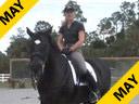 Jane Hannigan<br>Riding & Lecturing<br>Maksymillian<br>Understanding the<br>Stiff & Hollow Horse<br>13 yrs. old Oldenburg<br>Training:Grand Prix<br>duration:21 minutes