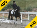 Jeremy Steinberg<br> Assisting<br> Chelsea Nunweiller<br> Oley<br> KWPN<br> 12 yrs. old Gelding<br> Training: PSG<br> Owner: Grit High<br> Duration: 22 minutes