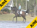Bo Jena<br> Assisting<br> Jennifer Beaumert<br> Lancelot<br> Danish<br> 12 yrs. old Gelding<br> Training:GP<br> Duration: 34 minutes