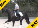 Betsy Steiner<br>Riding & Lecturing<br>Findley Titaan<br>9 yrs. Old Gelding<br>KWPN<br>Training: Prix St. George/Intermediaire 1<br>Duration: 26 minutes