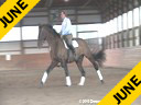 Jeremy Steinberg<br> Assisting<br> Andreas Stano<br> Odyssey<br> 13 yrs. old Gelding<br> KWPN<br> by: Roemer<br> Owned by:<br> Andreas Stano<br>and Gail Herrell<br> Training: PSG level<br> Duration: 55 minutes