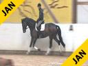 Ulla Salzgeber<br> Assisting<br> Frank Freund<br> Guanhamara<br> by: Rivero 2<br> 4 yrs. old Mare<br> Training: A Level Test<br> Owner: Rafaela Baungartner<br> Duration: 29 minutes