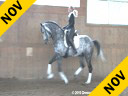 Daniel Ramseier<br> Assisting<br> Hayley Beresford<br> Ribery<br> Oldenburg<br> by: Rubils<br> 6 yrs. old Stallion<br> Training: 3rd Level<br> Owner: Daniel Ramseier<br> Duration: 31 minutes