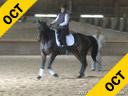 Shannon Dueck<br> Assisting<br> Susan Hamilton<br> Lord Locksaly<br> Trakehner<br> 11 yrs. old Stallion<br> Training: 1-2- Level<br> Owner: Maggie Stevens<br> Duration: 34 minutes