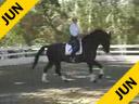 Mette RosencrantzRiding & LecturingTaisonKWPN GeldingOwner: Mette Rosencrantz7 yrs. old Training: 4th LevelDuration: 34 minutes