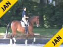 Ellen Bontje<br> Riding &amp; Lecturing<br> Wisch De Je<br> KWPN<br> by:Rosseau<br> 7 yrs. old Mare<br> Training: 3rd/4th Level<br> Owner: DesJeu Dressage<br> Duration: 25 minutes