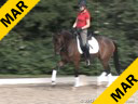 Wolfram Wittig<br> Assisting<br> Dorothy Rhode<br> Batumi<br> Hanoverian <br> by: Breitling W<br> 5 yrs. old Mare<br> Training: 1st/2nd Level<br> Owner: Dorothy Rhode<br> Duration: 25 minutes