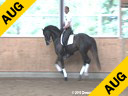 Hartwig Burfeind<br> Riding & Lecturing<br> Wunschtraumer<br> 8 yrs. old Stallion<br> by: White Star<br> Training: PSG Level<br> Owner: Pferd24<br> Duration: 26 minutes