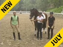 Mette Rosencrantz Riding & Lecturing Breaking Of The Young Horse Wellington 3 yrs. old Gelding Hanoverian Duration: 35 minutes