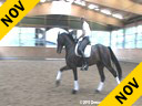 Shannon Dueck<br> Riding & Lecturing<br> Control<br> Swedish Warmblood<br> 9 yrs. old<br> Owner: Evan Lindsay<br> Training: Intermediaire 1<br> Duration: 38 minutes