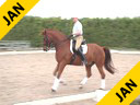 Available on DVD No. 21<br>Hubertus Schmidt<br> Riding & Lecturing<br> Valentino<br> Hanovarian<br> 12 yrs. old Gelding<br> Owned By:<br> Katherine Von Ertfelda<br> Training: GP Level<br> Duration: 48 minutes