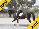 Jane Hannigan<br>Riding and Lecturing<br>Woytek<br>13 yrs. old Hanovarian<br>Owner: Jeanette Brockway<br>Training: Prix St. George<br>Duration: 23 minutes