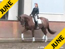 Penny Rockx<br>Assisting<br>Shani Pitcho<br>Zorette<br>KWPN<br>4 yrs. old Mare<br>Owned by:<br>Penny and Johann Rockx<br>Training: Training LevelEssen Belgium<br>Duration:30 minutes