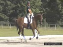 Day 2<br> David Marcus<br> Assisting<br> Marcie Doiron-Doyle<br> Riding<br> Aries<br> 10  yrs. Old CWP<br> Training: GP<br> Duration: 60 minutes