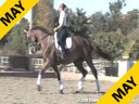 Shannon Peters<br>Riding & Lecturing<br> Flor De Selva<br> Owner: Laurie Browning<br>&<br> Shannon Peters<br> Westfalen Gelding<br> 8 yrs. old<br> Training: Prix St. George<br> Duration: 30 minutes