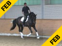 Day 2<br> Heike Kemmer<br> Assisting<br> Bonnie Padwa<br> Nanook<br> Swedish Warmblood<br> 16 yrs. old  Gelding<br> Training: 4th  Level<br> Duration: 41 minutes