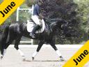 Jan Ebeling<br>Assisting<br>Heather Hopfensperger<br>History<br>4 yrs. old Hanovarian<br>by:Your Highness<br>Training: Training Level<br>Duration: 27 minutes