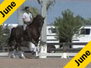 Kathy Connelly<br> Assisting<br> Ryan Yap<br> Lightning<br> 14 yrs. old Hanoverian<br> Training: Intermediaire 1 Owner: Renee Isler<br>Duration: 31 minutes