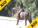 Ellen Bontje<br> Riding &amp; Lecturing<br> Wensch DeJeu<br> KWPN<br>7 yrs old Mare<br> by:Jazzz<br> Owner: DeJeu Dressage<br> Duration: 29 minutes