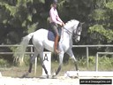Day 2<br> David Marcus<br> Assisting<br> Smiek<br> Riding<br> Pascali<br> Duration: 31 minutes