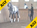 Work in Hand<br> Daniel Ramseier<br> Work in Hand<br> Ribery<br> Oldenburg<br> by: Rubils<br> Owner: Daniel Ramseier<br> 6 yrs. old Stallion<br> Training: Young Horse 3rd Level<br> Duration: 15 minutes
