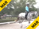 Betsy Steiner<br> Assisting<br> Tacie Saltonstall<br> Mit<br> 10 yrs. old Danish Warmblood<br> Training: PSG<br> Duration: 39 minutes