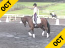 Lendon Gray<br> Assisting<br> Rachael Chowanec<br> Hakunamatata<br> Welsh/TB Cross<br> FEI Pony<br> Owner: Rachael Chowanec<br> 8 yrs. old Gelding<br> Training: 3rd Level<br> Duration: 50 minutes