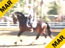 Mette Rosencrantz Riding & Lecturing Donnatello by:Don Schufro Swedish Warmblood Owner: Mette Rosencrantz 5 yrs. old FEI Training: Training Level Duration: 38 minutes