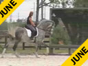 USDF APPROVED<br>University Accreditation<br>George Williams<br>Assisting<br>Jessie Ely<br>Devon<br>Westfalen Gelding<br>6 yrs. old<br>Training: 3rd/4th Level<br>Duration: 46 minutes
