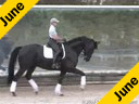Betsy Steiner<br>Riding & Lecturing<br>Titan<br>9 yrs. old KWPN Gelding<br>by: Metal<br>Owned by<br> University of Findley<br>Training:Developing Horse/Prix St. George<br>Duration: 37 minutes