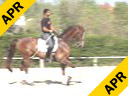 Juan Matute<br> Assisting<br> Enrique Brevah<br> Sir-Kan<br> Westfalen<br> 7 yrs. old Gelding<br> Training: 1-1/1-2<br> Duration: 31 minutes