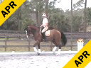 Betsy Steiner<br> Assisting<br> Wendy Smith<br> Nurito<br> KWPN<br> 10 yrs. old<br> Training:PSG Level<br> Duration: 37 minutes