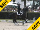 USDF APPROVED<br> University Accreditation<br> Aachen GP Special<br> Steffen Peters<br> Commentary by<br>Lief Tornblad<br> Ravel<br>by: Contango<br> 14 yrs. old Gelding<br> Training: GP<br> Duration: 35 minutes