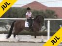 Kathy Connelly<br>Assisting<br>Laine Hills<br>Ukarde<br>KWPN<br>6 yrs. old Gelding<br>Training 3rd/4th Level<br>Duration: 36 minutes
