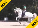 Andreas Hausberger<br> Assisting<br> Craig Stanley<br> Caliente DG<br> KWPN<br> 9 yrs. old Mare<br> Training: Int-1<br> Duration: 24 minutes