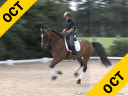 Heike Kemmer<br> Assisting<br> Rita Brown<br> Rochefort<br> Hanoverian<br> 7 yrs. old Gelding<br> Training: PSG Level<br> Duration: 37 minutes