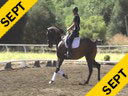 Andreas Hausberger<br> Assisting<br> Paula Langan<br> Monte<br> 15 yrs. old Gelding<br> Training: GP<br> Duration: 26 minutes