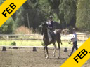 Andreas Hausberger<br> Assisting<br> Roberta Pollock<br> Orion<br> 15 yrs. old Gelding<br> Training: 3rd/4th Level<br> Duration: 27 minutes