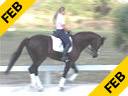 Hubertus Schmidt<br> Assisting<br> Heidi Degele<br> Everybody Darling<br> Westfalen<br> 12 yrs. old Gelding<br> Training: Grand Prix<br> Duration: 31 minutes
