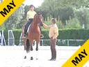 Juan Matute<br> To Improve The<br> Balance Of The Horse<br> Assisting<br> Paloma Praga<br> Casa Nova<br> 6 yrs. old<br> Duration: 17 minutes