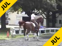 Lendon Gray<br>Assisting<br>Mica Mabragana<br>Granada<br>Owner: Sam Grunkorn<br>Swedish Gelding<br>11 yrs.old Stallion<br>Training Intermediaire (FEI Yr.)<br>Duration: 43 minutes
