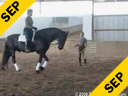 Felicitas von Nuemann<br> A Lunging Lesson<br> Focused on Seat, Position & Balance<br> Assisted by Olivia Frost & Eileen McKenna<br> Nolke<br> 12 yrs. old Gelding<br> Location:First Choice Farm, Maryland USA<br> Duration: 20 minutes