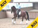 Rudolf Zeilinger<br> Riding &amp; Lecturing<br> Cresendo<br> Holsteiner<br> by:Casall<br> 6 yrs. old Gelding<br> Training: 3rd Level<br> Duration: 30 minutes