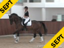 Wolfram Wittig<br> Assisting<br> Claudia Feldmann<br> Banettaw<br> Oldenburg<br> by: Breitling<br> 5 yrs. old Gelding<br> Training: 1st Level<br> Owner: Wolfram Wittig<br> Duration: 24 minutes