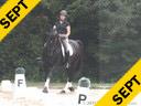 Klaus Balkenhol<br> Assisting<br> Jennifer Baumert<br> Don Principe<br> Hanoverian<br> by: Donnerhall<br> 12 yrs. old Stallion<br> Training: GP<br> Owner: Mariana Haymon<br> Duration: 27 minutes